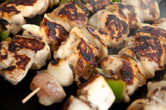 Steaming kebabs on the grill close-up Stock Photography