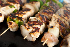 Steaming kebabs on the grill close-up Stock Photo
