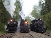 Steaming logging locmotives pose for pictures. Three steam locomotives huff and puff for photographers in Washington State stock photo