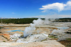 Steaming pool of Geysers at Norris Basin  in Yellowstone Stock Photos