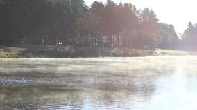 Steaming river in nature stock footage