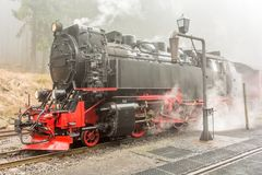 Steaming steam locomotive in a forest in fog royalty free stock photos