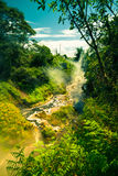 Steaming stream in New Zealand Royalty Free Stock Photos