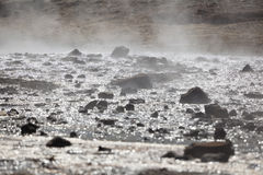 Steaming water at Lake Bogoria, Kenya. Steaming water of hot springs at Lake Bogoria in Kenya against the light Royalty Free Stock Images