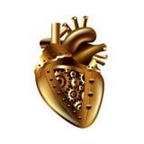 Steampunk human heart  vector Stock Photo