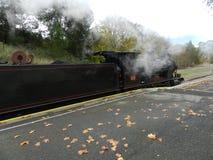 Steamranger klaar voor een reis Royalty-vrije Stock Afbeelding