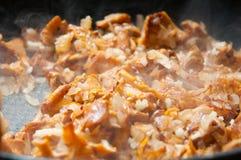 Steamy блюдо гриба Стоковые Фотографии RF