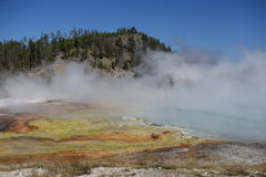 Steamy blue lake, Grand Prismatic Spring. Yellowstone National Park Stock Image