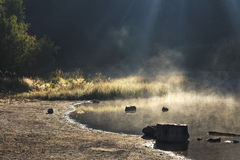 Steamy lake in the forest Stock Photography