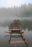 Stear in acqua fotografia stock libera da diritti