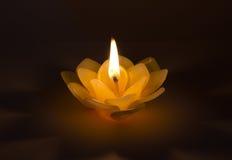 Stearin på lotusblomman Royaltyfri Bild