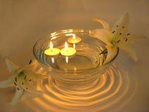 stearinljus blommabrunnsort Arkivfoto