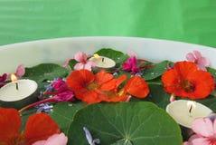stearinljus blommor Arkivbilder