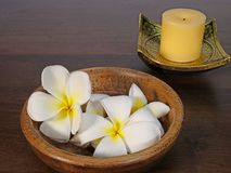 Stearinljus, färgvaror och tropiska blommor Royaltyfria Bilder