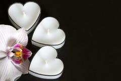 Stearinljus hjärtor med orkidén på svart bakgrundsförälskelse Royaltyfria Bilder