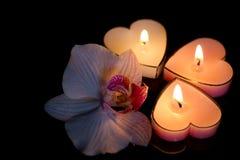 Stearinljus hjärtor med orkidén på svart bakgrundsförälskelse Royaltyfri Fotografi