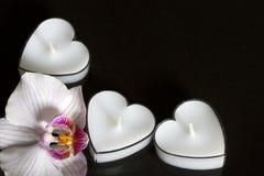 Stearinljus hjärtor med orkidén på svart bakgrundsförälskelse Royaltyfria Foton