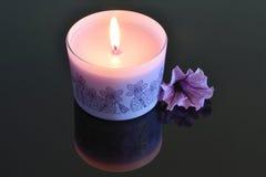 Stearinljus och blomma Royaltyfri Foto