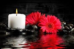 Stearinljus och blommor Royaltyfri Fotografi