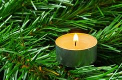 Stearinljus- och jultree Arkivbild