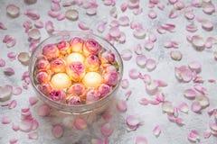 stearinljus rosa ro Royaltyfri Foto