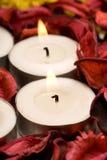 stearinljus rose rad för petals Arkivbilder