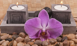 Stearinljus, stenar och orchid Royaltyfri Fotografi