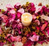 Stearinljuset med steg Royaltyfri Fotografi