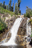 Steavenson faller vattenfallet nära Marysville, Australien Royaltyfri Foto