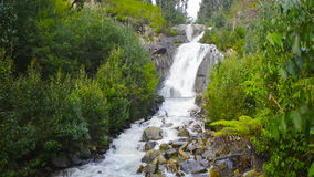 Steavenson Falls Stock Photos