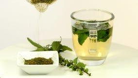 Stechende Nessel, Lebensmittel und Heilpflanze, Tee stock footage