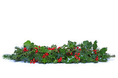 Stechpalmen- und Ivy Christmas-Girlande lokalisiert. Stockfotos