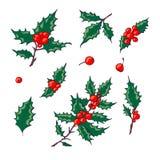 Stechpalmenbeerenikone Weihnachtssymbol-Vektorillustration Lizenzfreie Stockbilder