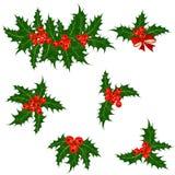 Stechpalmenbeerensatz Weihnachtssymbolvektor Stockfotografie