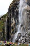 Stechpalmewasserfall Lizenzfreies Stockbild