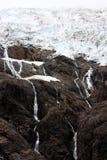 Stechpalmewasserfall Stockfoto