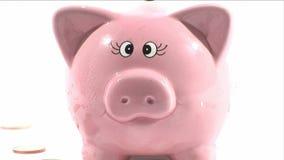 Stecken eines Geldes in eine piggy Querneigung stock video footage