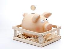 Stecken Sie Münze in der Piggy Querneigung ein Stockfotografie