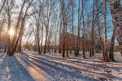 Stedelijk Landschap Berdsk, het gebied van Novosibirsk, Rusland Royalty-vrije Stock Afbeelding