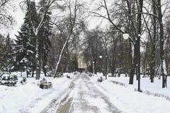 Stedelijk park in de winter Stock Afbeeldingen