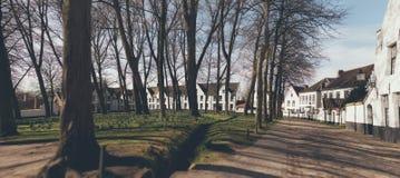 Stedelijk park in de winter met vergoelijkte huizen Stock Foto