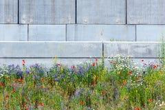 Stedelijke Bloemen Royalty-vrije Stock Afbeeldingen