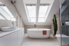 Stedelijke flat - badkamers bij de zolder stock afbeelding