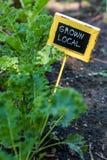 Stedelijke tuin royalty-vrije stock afbeeldingen