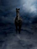 Steed nero di Pagasus in nubi di tempesta Fotografia Stock Libera da Diritti