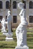 Steeg antieke standbeelden in de binnenplaats van Ostrog-Academie Stock Foto's