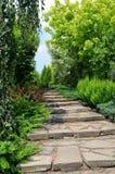 Steeg in de tuin Royalty-vrije Stock Afbeeldingen