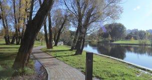 Steeg dichtbij vijver in het stadspark stock footage