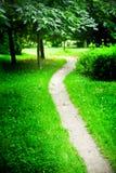 Steeg in het groene park Stock Afbeeldingen