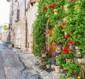 Steeg met bloemen Stock Foto's